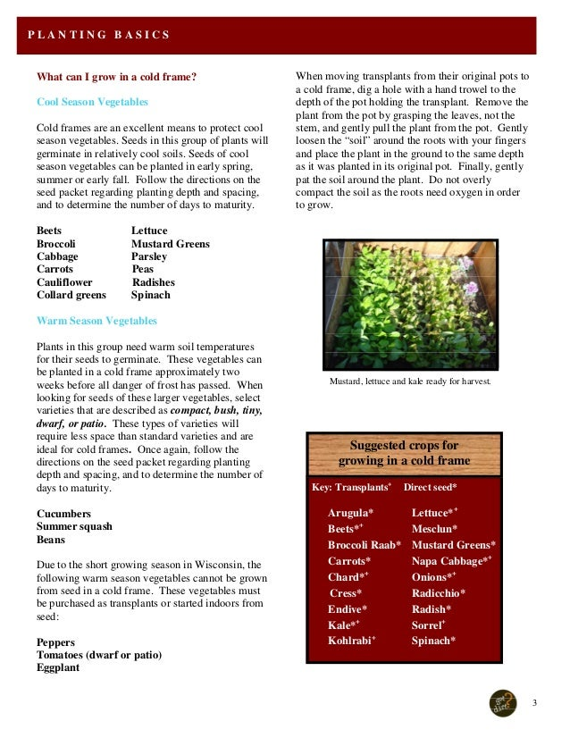 Cold Frame Manual - for Winter Gardening