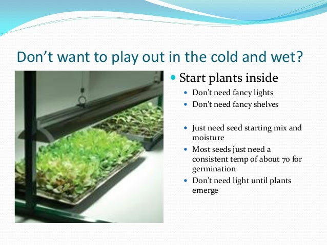 Cold Frame, Hoop House, Green House - What\'s Right for my Winter Gard…