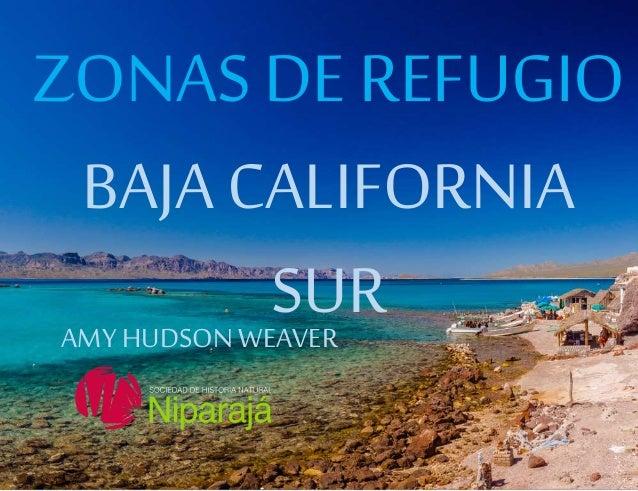 Texto ZONAS DE REFUGIO BAJA CALIFORNIA SURAMYHUDSONWEAVER