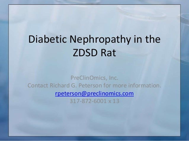 Diabetic Nephropathy in the ZDSD Rat PreClinOmics, Inc. Contact Richard G. Peterson for more information. rpeterson@precli...