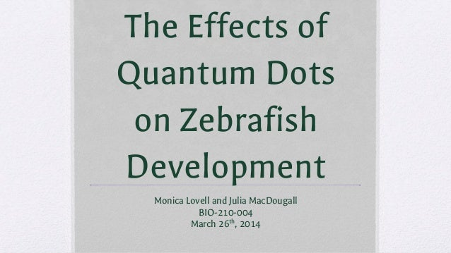 The Effects of Quantum Dots on Zebrafish Development Monica Lovell and Julia MacDougall BIO-210-004 March 26th , 2014