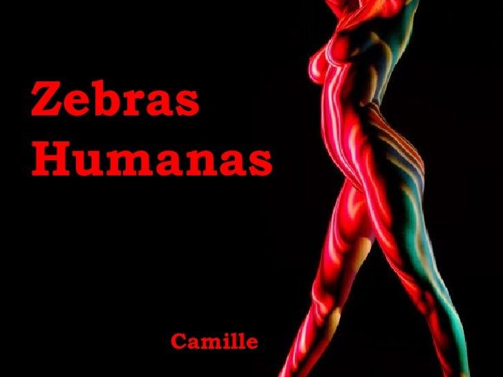 Zebras    Humanas   Camille