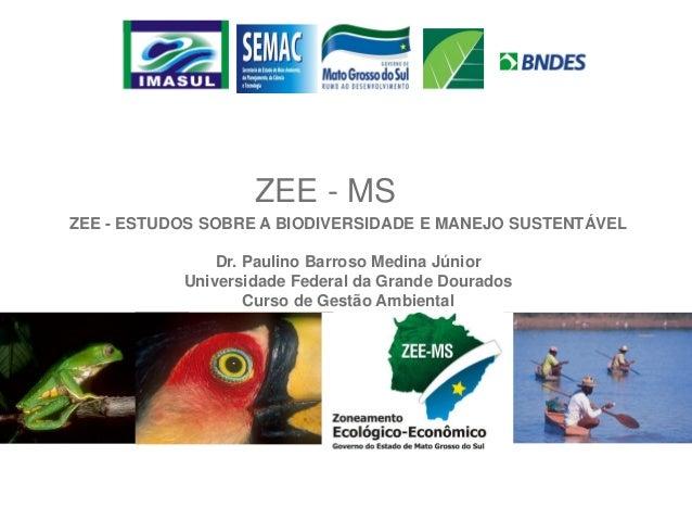 ZEE - MS ZEE - ESTUDOS SOBRE A BIODIVERSIDADE E MANEJO SUSTENTÁVEL Dr. Paulino Barroso Medina Júnior Universidade Federal ...