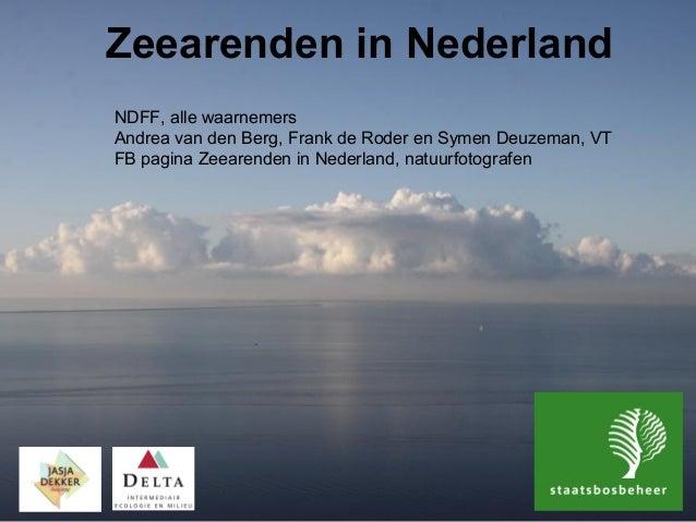 Zeearenden in Nederland NDFF, alle waarnemers Andrea van den Berg, Frank de Roder en Symen Deuzeman, VT FB pagina Zeearend...