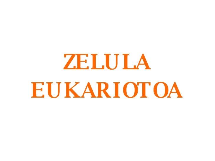 ZELULA EUKARIOTOA
