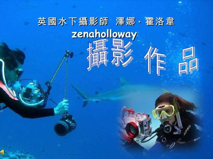 英 國 水下 攝 影 師   澤 娜 · 霍洛 韋   zenaholloway  攝影 作 品