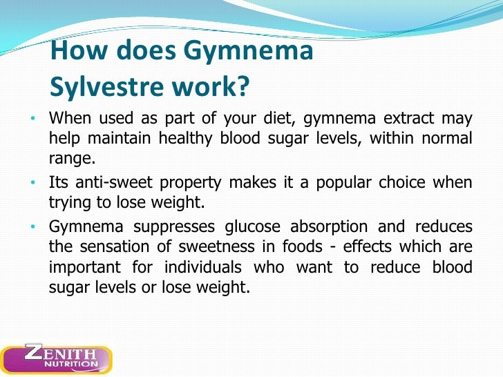 does gymnema sylvestre cause weight loss