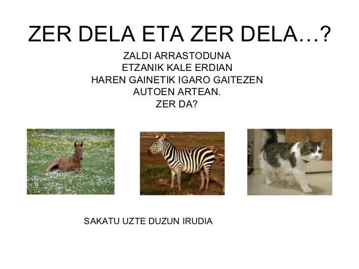 ZER DELA ETA ZER DELA…? <ul><li>ZALDI ARRASTODUNA </li></ul><ul><li>ETZANIK KALE ERDIAN </li></ul><ul><li>HAREN GAINETIK I...