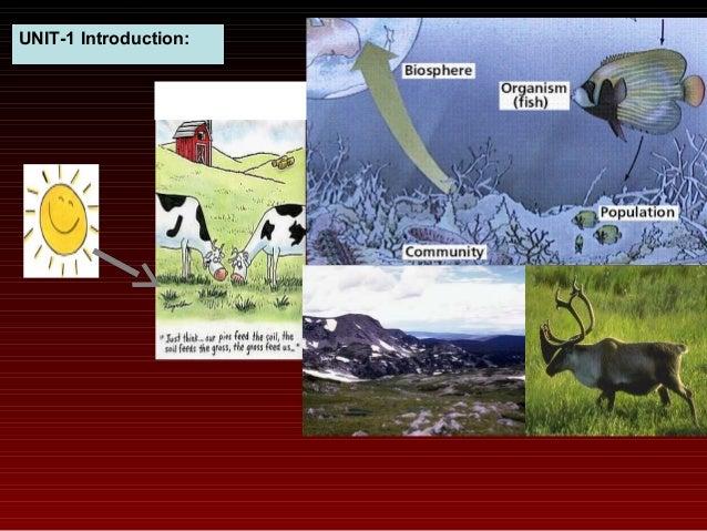 Ecology And Environment Pd Sharma Pdf
