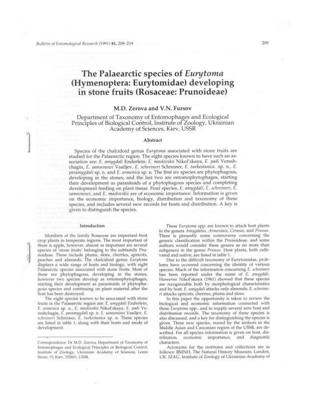 Bulletin of Er1ttir12iilogir'iil Rt'St'llI'('ll (1991) 81, 2U9—219  209  The Palaearctic species of Eurytoma (Hymenoptera:...