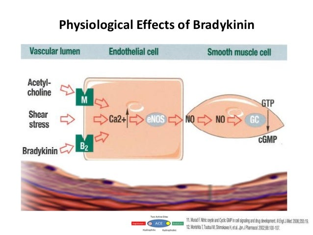 Effective Treatment of Hypertension Dahlof B et al. ASCOT-BPLA Study Lancet 2005; 46:895-906.