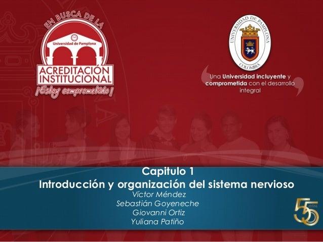 Capitulo 1 Introducción y organización del sistema nervioso Víctor Méndez Sebastián Goyeneche Giovanni Ortiz Yuliana Patiño