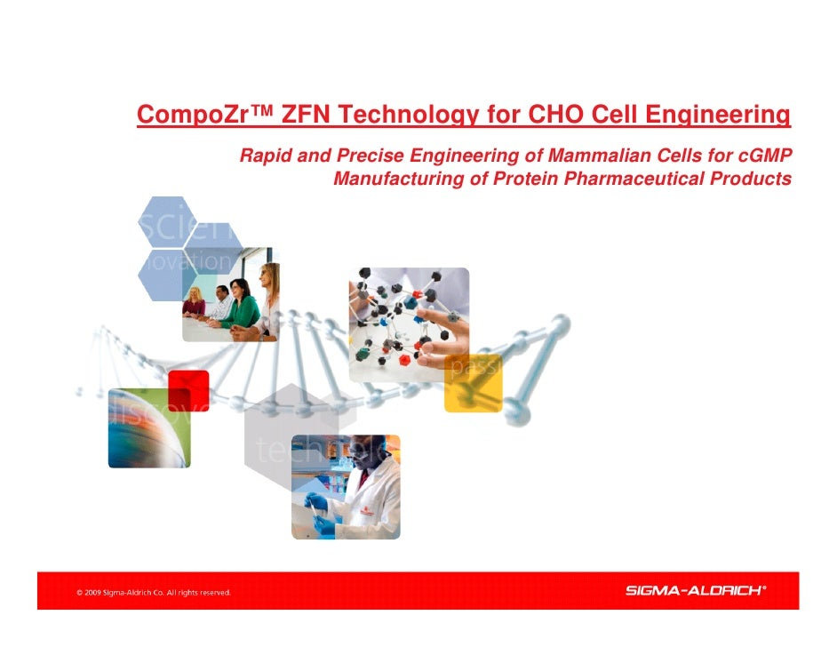 CompoZr™ ZFN Technology for CHO Cell Engineering        Rapid and Precise Engineering of Mammalian Cells for cGMP         ...