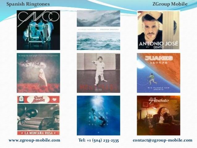 ZGM Catalogue