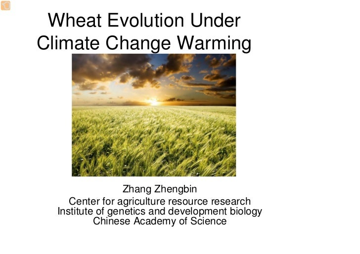 Wheat Evolution UnderClimate Change Warming                  Zhang Zhengbin     Center for agriculture resource research  ...