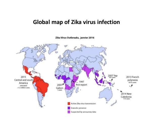 Zika virus disease the virus was first isolated in zikatserofniadnagu 8 global map of zika virus infection publicscrutiny Gallery