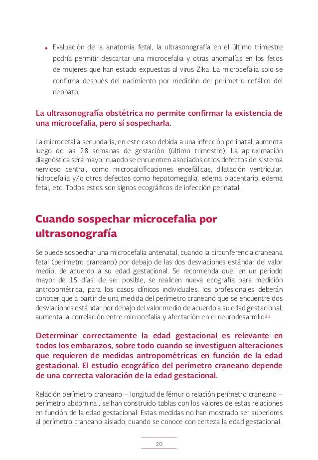 Zika lineamiento 11032016 cnegsr