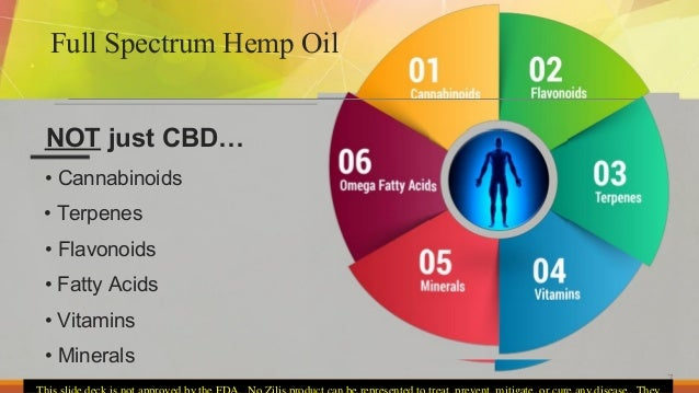 Medical Discussion Of The Endocannabinoid System