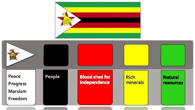 Zimbabwean/s Languages: Shona, Ndebele & English Religion Population Structure POPULATION DYNAMICS