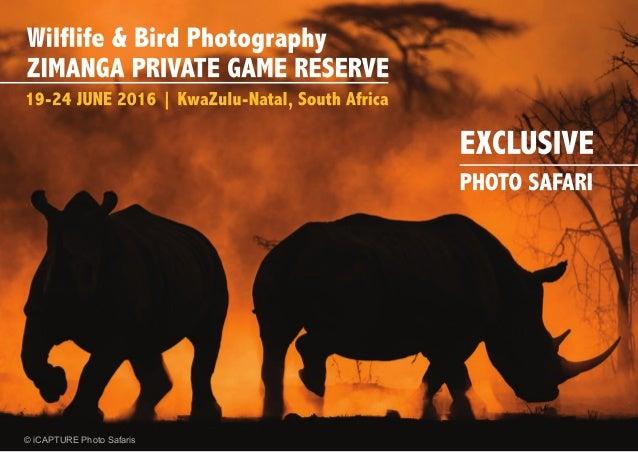 © iCAPTURE Photo Safaris