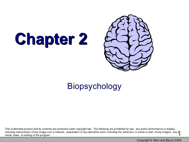 Chapter 2 Biopsychology Copyright  © Allyn and Bacon 2009 This multimedia product and its contents are protected under cop...