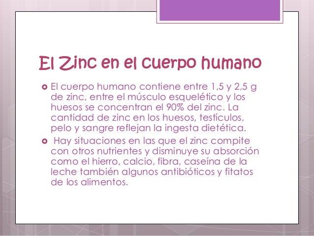 Zinc - En que alimentos se encuentra zinc ...