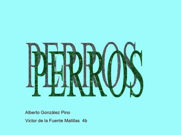 PERROS Alberto González Pino Victor de la Fuente Matillas  4b