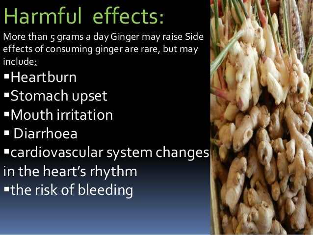 Side effects of ginger root