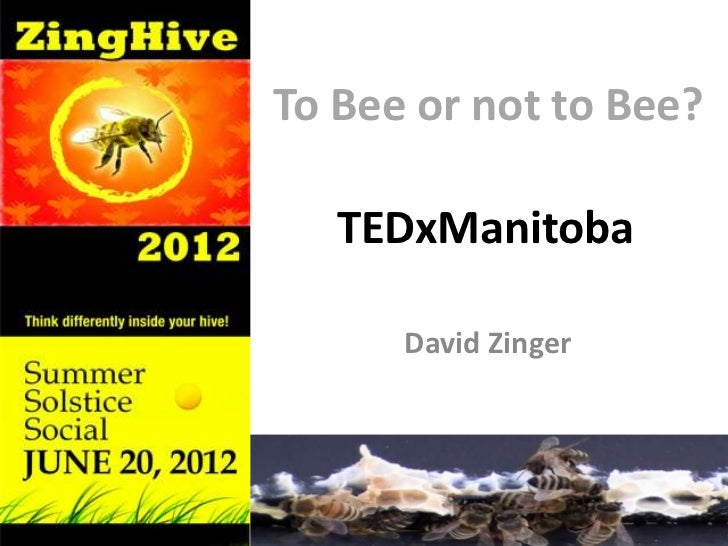 To Bee or not to Bee?   TEDxManitoba      David Zinger