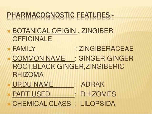 Ginger (Zingiber officinale) Slide 3