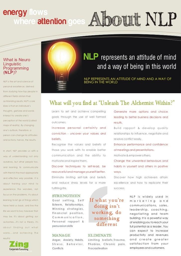 Zing NLP Practitioner brochure Slide 2