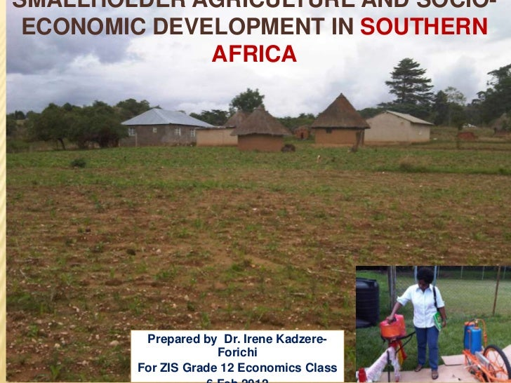 SMALLHOLDER AGRICULTURE AND SOCIO- ECONOMIC DEVELOPMENT IN SOUTHERN              AFRICA         Prepared by Dr. Irene Kadz...
