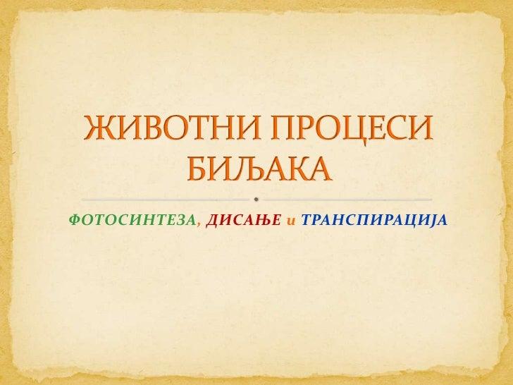 ФОТОСИНТЕЗА, ДИСАЊЕ и ТРАНСПИРАЦИЈА