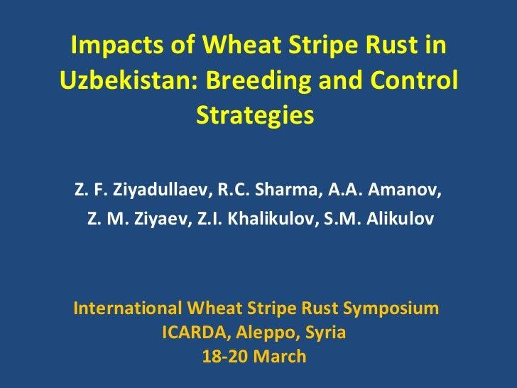 Impacts   of Wheat Stripe Rust in Uzbekistan: Breeding and Control Strategies  Z. F. Ziyadullaev, R.C. Sharma, A.A. Amanov...