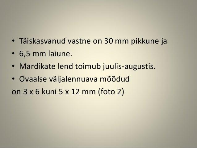 • Täiskasvanud vastne on 30 mm pikkune ja • 6,5 mm laiune. • Mardikate lend toimub juulis-augustis. • Ovaalse väljalennuav...