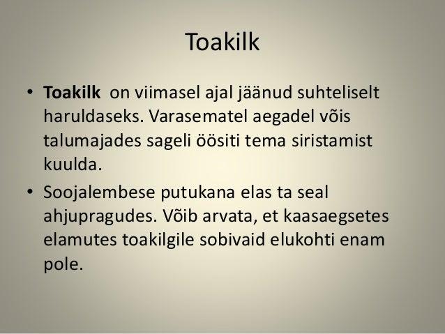 Toakilk • Toakilk on viimasel ajal jäänud suhteliselt haruldaseks. Varasematel aegadel võis talumajades sageli öösiti tema...