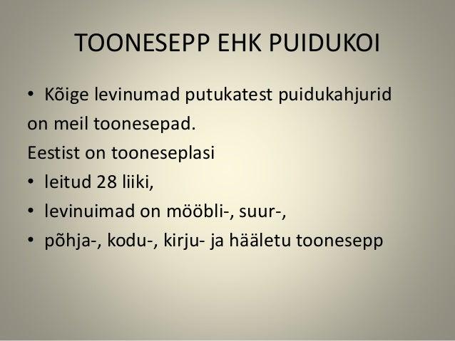 TOONESEPP EHK PUIDUKOI • Kõige levinumad putukatest puidukahjurid on meil toonesepad. Eestist on tooneseplasi • leitud 28 ...