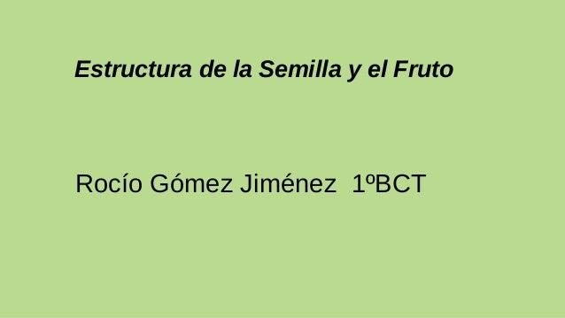 Estructura de la Semilla y el Fruto Rocío Gómez Jiménez 1ºBCT