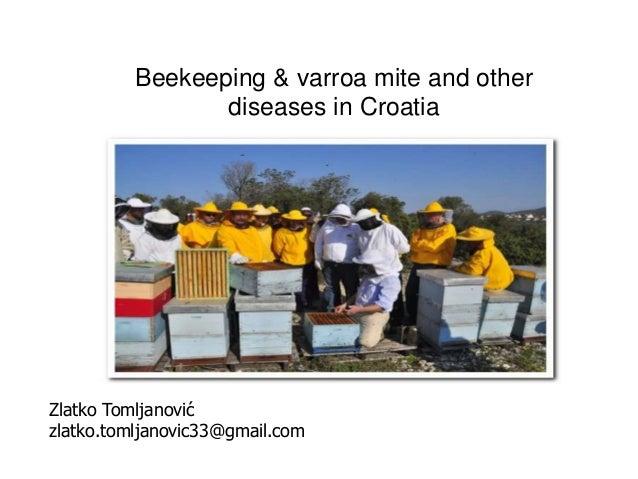 Beekeeping & varroa mite and other diseases in Croatia Zlatko Tomljanović zlatko.tomljanovic33@gmail.com