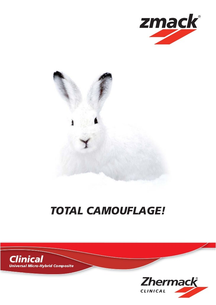 TOTAL CAMOUFLAGE!ClinicalUniversal Micro-Hybrid Composite