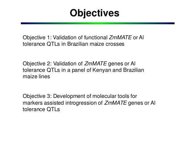 GRM 2013: Validation of ZmMATEs as Genes Underlying Major Al Tolerance QTLs in Maize -- C Guimarães (redacted) Slide 3