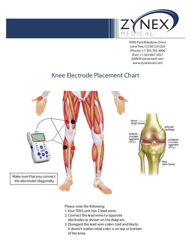 Tens Knee Diagram Trusted Wiring Diagram