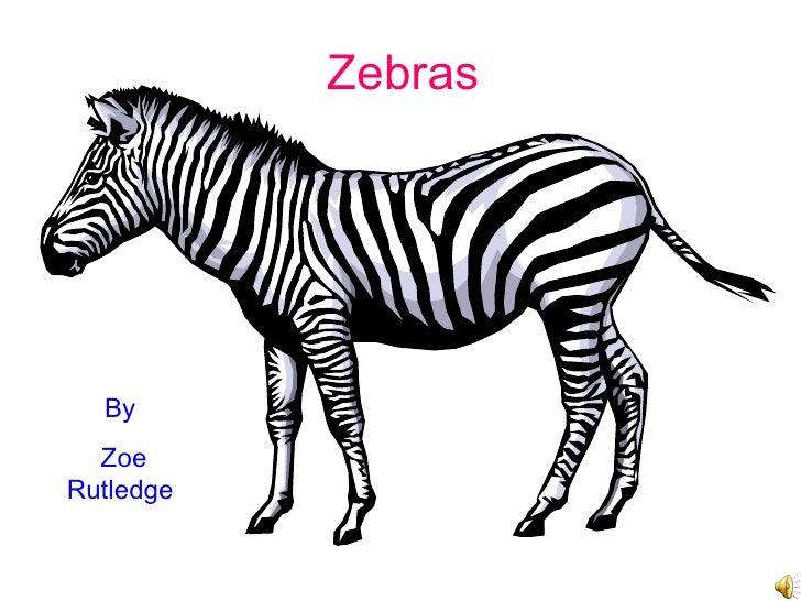 Zebras By Zoe Rutledge