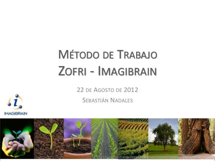 MÉTODO DE TRABAJOZOFRI - IMAGIBRAIN   22 DE AGOSTO DE 2012     SEBASTIÁN NADALES