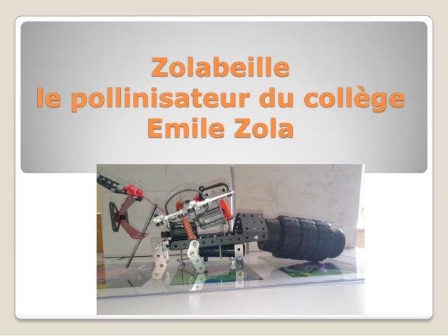Zolabeille le pollinisateur du collège Emile Zola