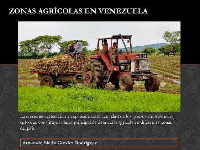 Armando Nerio Guedez Rodriguez ZONAS AGR�COLAS EN VENEZUELA La creciente aceleraci�n y expansi�n de la actividad de los gr...