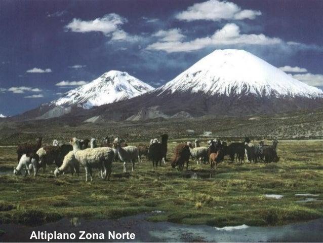 Zonas naturales de chile for Marmoles y granitos zona norte