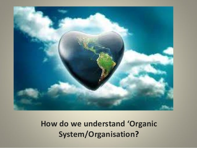 How do we understand 'Organic System/Organisation?