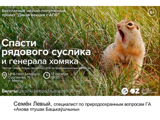 Семён Левый, специалист по природоохранным вопросам ГА «Ахова птушак Бацькаўшчыны»