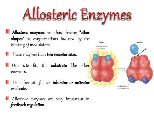 allosteric inhibition